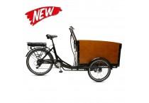 E Cargo TR01