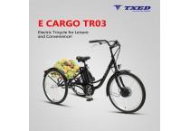 E Cargo TR03
