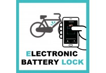 ELECTRONIC BATTERY LOCK