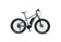 Urban Rambler Electric MM